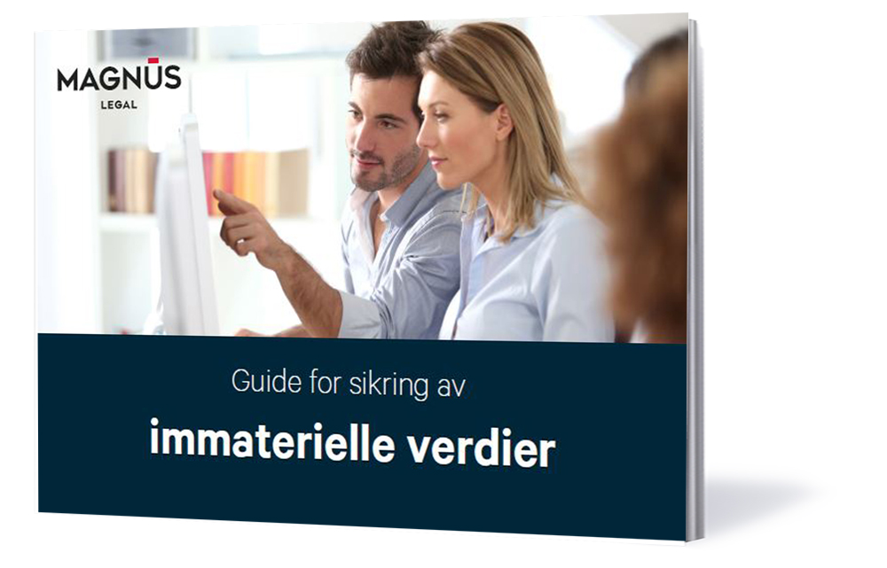 eBook_Cover_immaterielle verdier